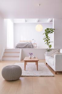 ステップフロアの広くてシンプルな部屋の写真素材 [FYI03433839]