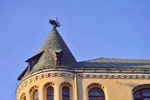 ラトビア歴史地区世界遺産リガ旧市街のアールヌーヴォー建築の貴重な建物で猫の家と言われている・かつての住人のラトビア人がギルド(ドイツ人のみ入会が許されていた商工業者の会)の入会拒否されギルド会館にお尻を向けた猫の像を屋根に付けたが後には入会できて現在はギルド会館の方に向きを変えているの写真素材 [FYI03434076]