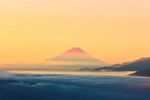 高ボッチ高原より朝焼けの富士山と雲海の写真素材 [FYI03434205]