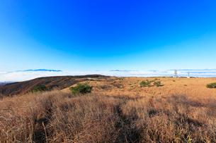 高ボッチ高原よりアルプスの山々と雲海の写真素材 [FYI03434211]