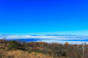 高ボッチ高原より北アルプスの山々と雲海の写真素材 [FYI03434212]