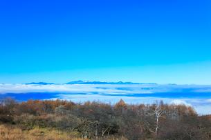 高ボッチ高原より北アルプスの山々と雲海の写真素材 [FYI03434213]