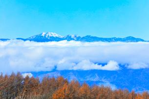 秋の高ボッチ高原より冠雪の乗鞍岳などの山々の写真素材 [FYI03434221]