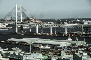 マリンタワーから見える横浜の街並み(モノクローム)の写真素材 [FYI03434297]