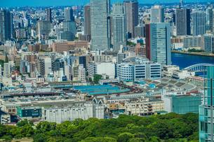 東京の街並みと築地市場の写真素材 [FYI03434313]