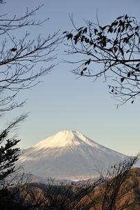陰影に富士山の写真素材 [FYI03434366]