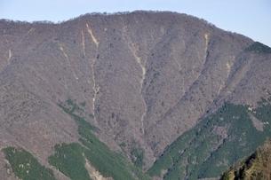 晩秋の大室山の写真素材 [FYI03434371]