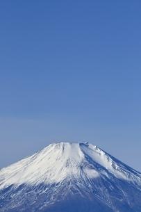 初冬の富士山の写真素材 [FYI03434404]