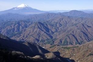 丹沢の山岳と富士山の写真素材 [FYI03434413]