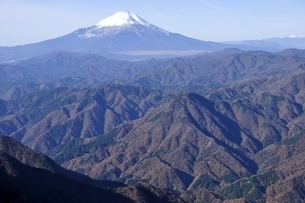 初冬の富士山の写真素材 [FYI03434414]