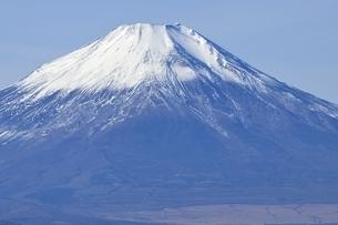 初冬の富士山の写真素材 [FYI03434436]