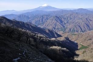 檜洞丸からの富士山展望の写真素材 [FYI03434443]
