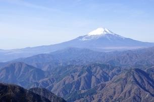 初冬の富士山の写真素材 [FYI03434444]