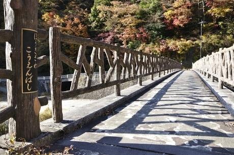 秋の箒沢公園橋の写真素材 [FYI03434545]