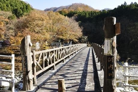 秋の箒沢公園橋の写真素材 [FYI03434547]