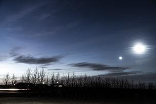 アイスランドの朝明けと並木道の写真素材 [FYI03434584]