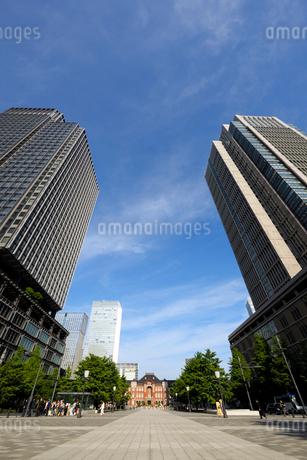 行幸通りから見上げる丸ビルと新丸ビルの写真素材 [FYI03434806]