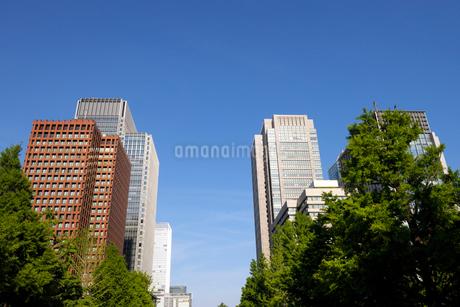丸の内の高層ビル群の写真素材 [FYI03434808]