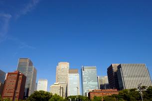 皇居外苑から見る丸の内の高層ビル群の写真素材 [FYI03434811]