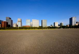 皇居前広場から見る丸の内の高層ビル群の写真素材 [FYI03434812]