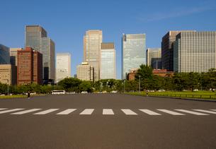 皇居外苑広場から見る丸の内の高層ビル群の写真素材 [FYI03434813]