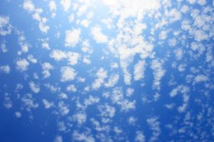 うろこ雲の写真素材 [FYI03434817]