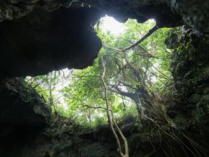 石垣島の洞窟の写真素材 [FYI03434888]