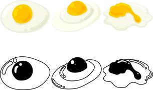 卵の可愛いアイコンの写真素材 [FYI03434939]