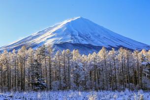 雪景色の富士山 富士山 鳴沢村の写真素材 [FYI03435073]
