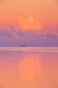 朝のコロール海峡の軍艦島の写真素材 [FYI03435138]