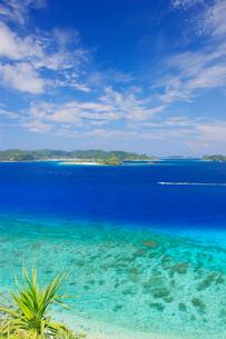 ニシバマビーチの珊瑚礁の写真素材 [FYI03435224]