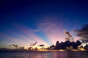 ピンクの太陽光の写真素材 [FYI03436016]