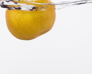 水に浮かぶ梨の写真素材 [FYI03436201]