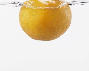 水に浮かぶ梨の写真素材 [FYI03436203]