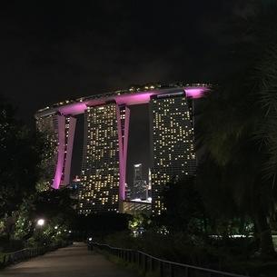 マリーナベイサンズ 夜 ライトアップ シンガポールの写真素材 [FYI03436559]