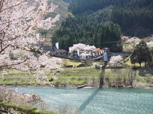 春の景色の写真素材 [FYI03436620]