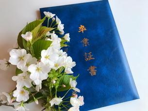 卒業証書 春の門出の写真素材 [FYI03436691]