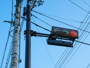 青空の下の赤信号と電信柱の写真素材 [FYI03436815]