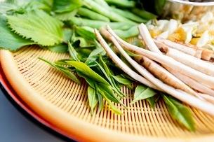料理に使う新鮮な野菜の写真素材 [FYI03436888]