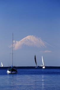 富士山の写真素材 [FYI03437115]