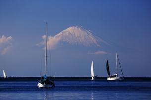 富士山の写真素材 [FYI03437116]