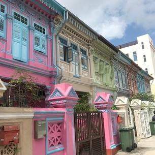 プラナカン建築 家 伝統的建築物 シンガポールの写真素材 [FYI03437132]