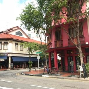 プラナカン建築 家 伝統的建築物 シンガポールの写真素材 [FYI03437133]