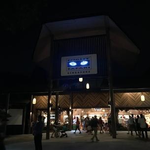 ナイトサファリ シンガポール ナイトライフ 動物園の写真素材 [FYI03437150]