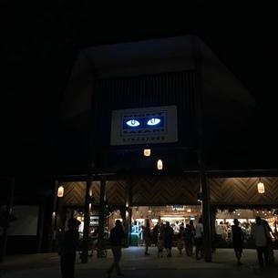 ナイトサファリ シンガポール ナイトライフ 動物園の写真素材 [FYI03437151]