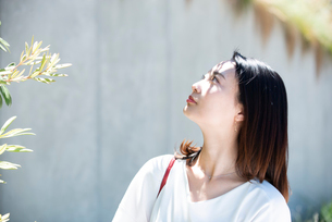 日差しを浴びながら上を見上げている女性の写真素材 [FYI03437409]