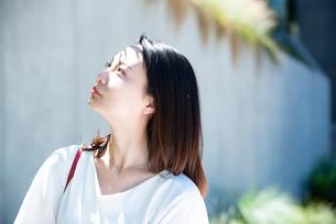 日差しを浴びている女性の写真素材 [FYI03437411]