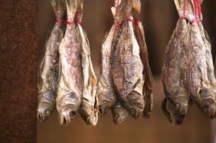 西營盤にある徳輔道西(デ・ヴォー・ロード・ウェスト)の通称「海味街」で売られる塩干魚「ハムユイ」かつては安価だったが、今は高価の写真素材 [FYI03437413]