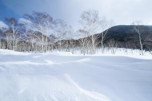 冬の山の写真素材 [FYI03437463]