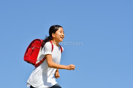 青空で走る小学生の女の子(ランドセル)の写真素材 [FYI03437480]